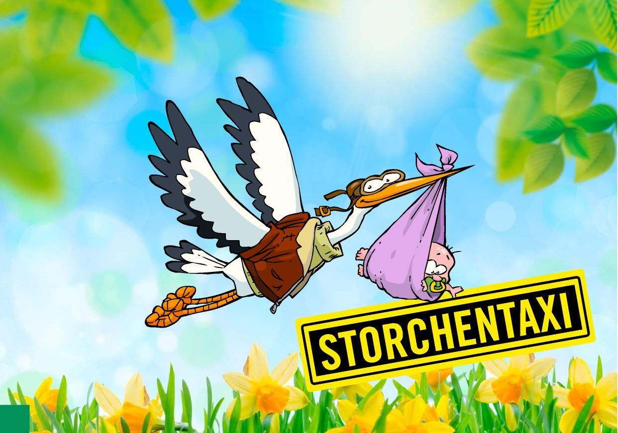 Storch72